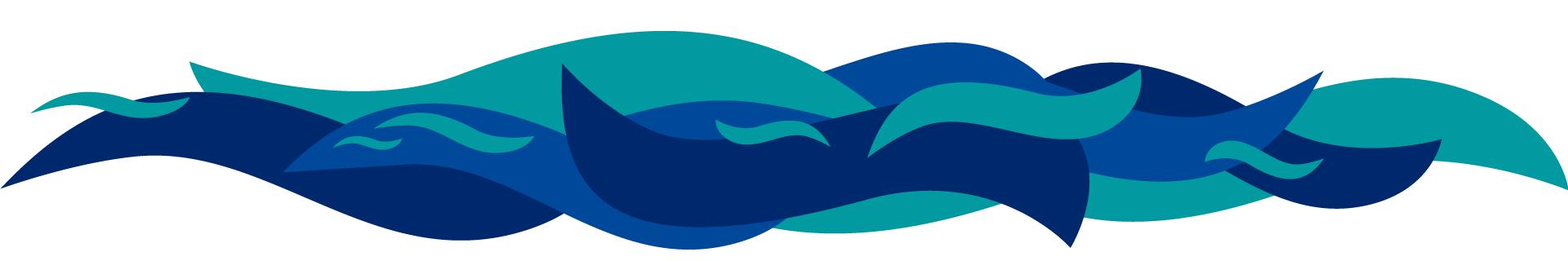 Hortimare B.V. Breeding & Propagating Seaweed
